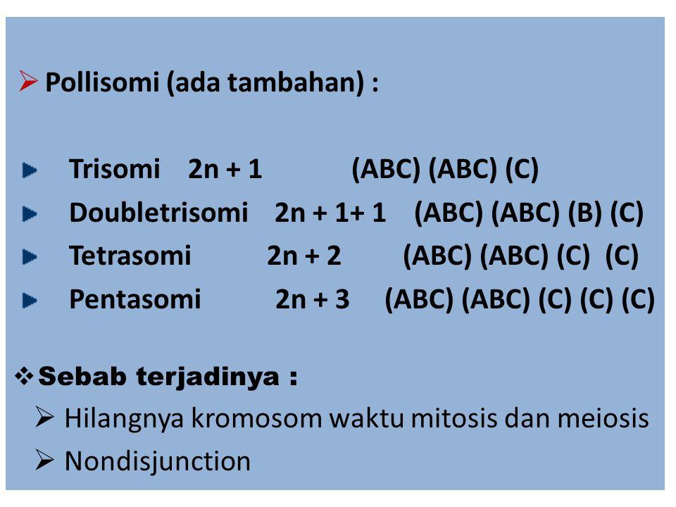 Pollisomi (ada tambahan) : Trisomi 2n + 1 (ABC) (ABC) (C)