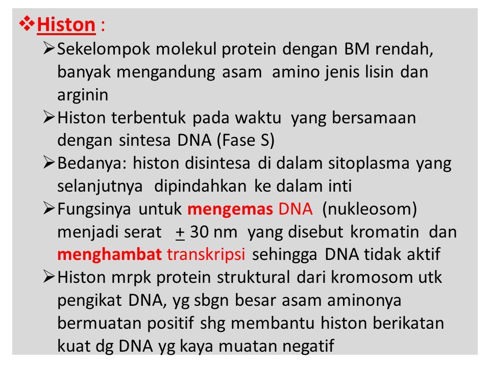 Histon : Sekelompok molekul protein dengan BM rendah, banyak mengandung asam amino jenis lisin dan arginin.