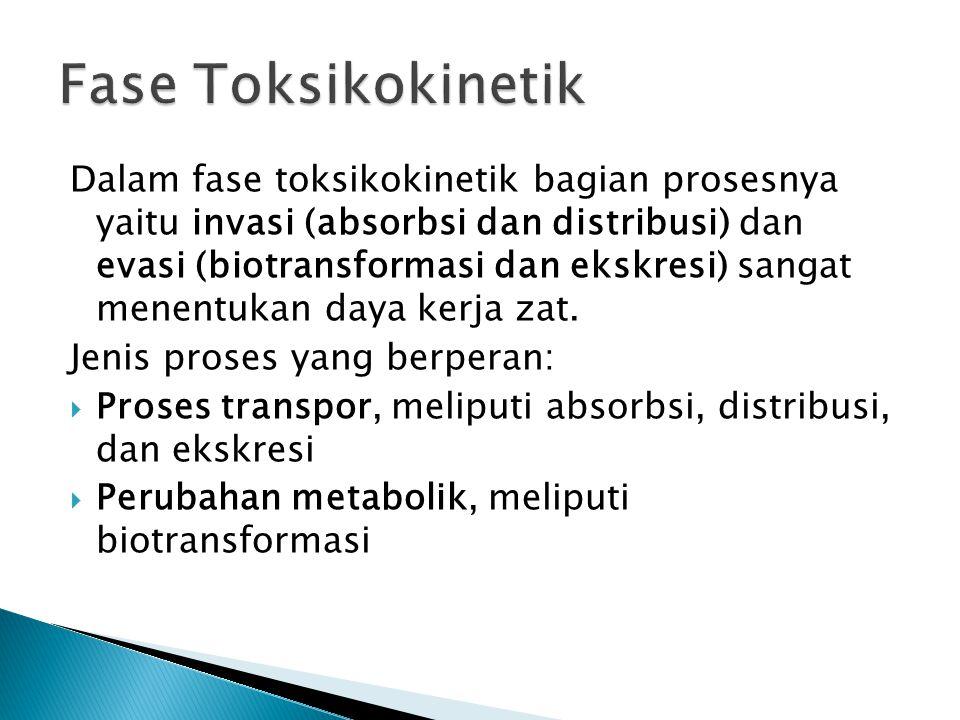 Fase Toksikokinetik