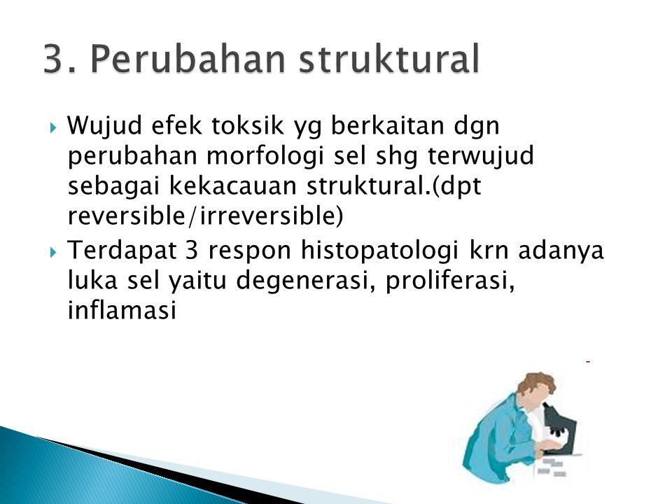 3. Perubahan struktural