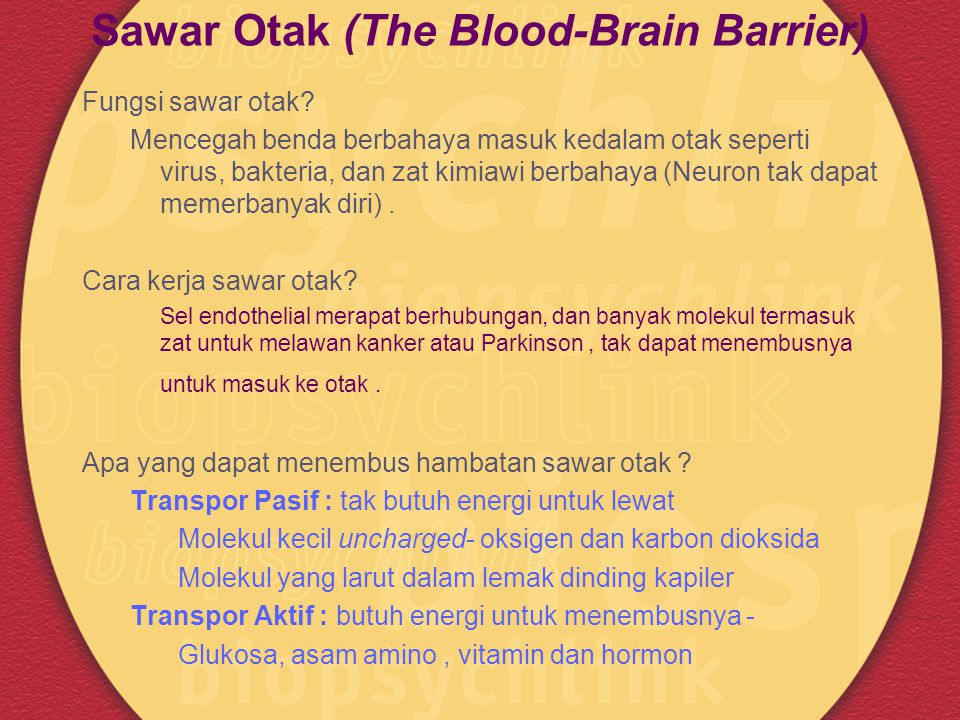 Sawar Otak (The Blood-Brain Barrier)