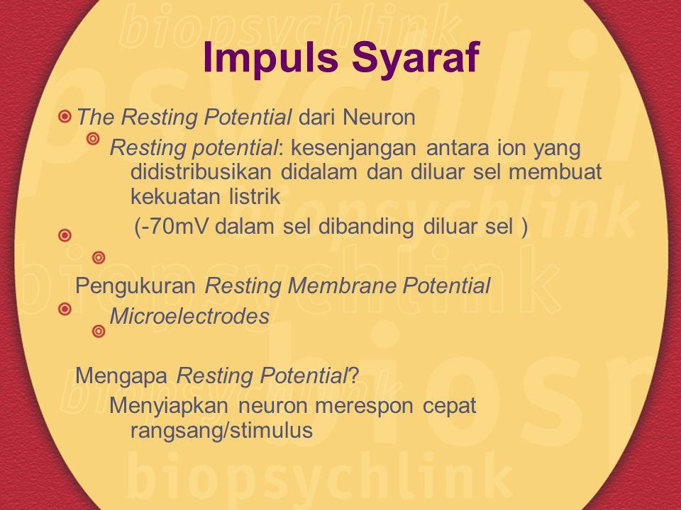 Impuls Syaraf The Resting Potential dari Neuron