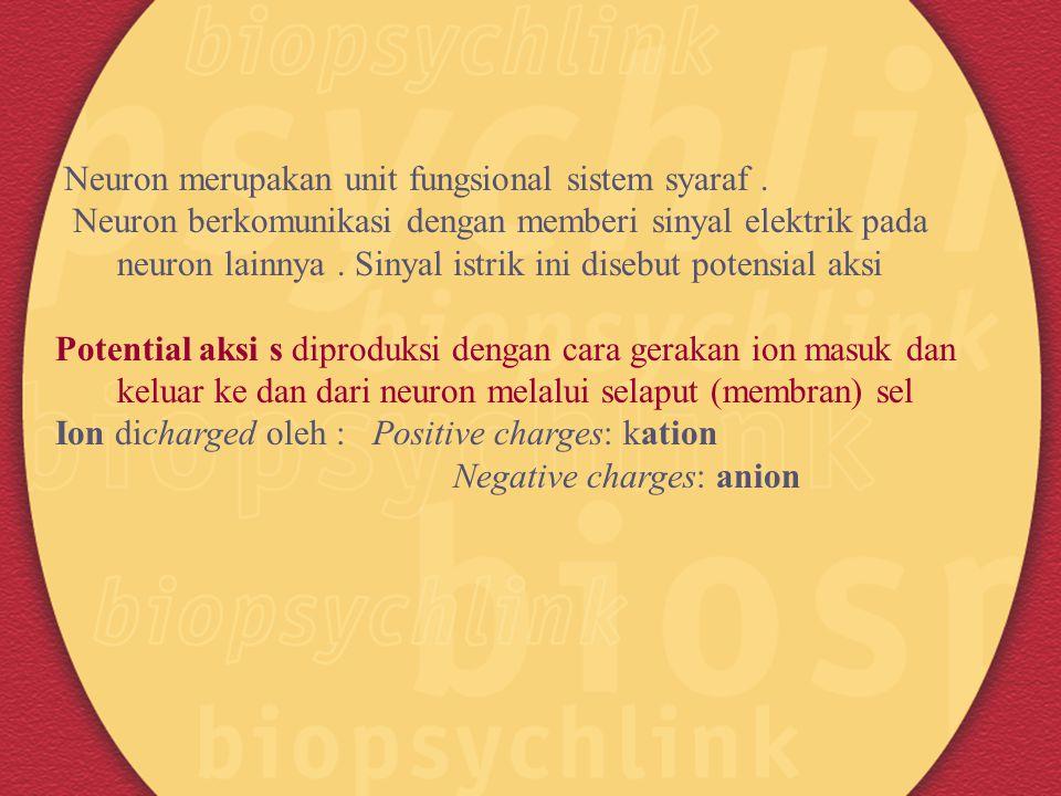 Neuron merupakan unit fungsional sistem syaraf .