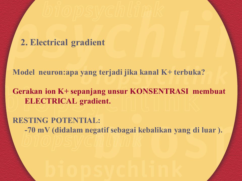 2. Electrical gradient Model neuron:apa yang terjadi jika kanal K+ terbuka Gerakan ion K+ sepanjang unsur KONSENTRASI membuat.