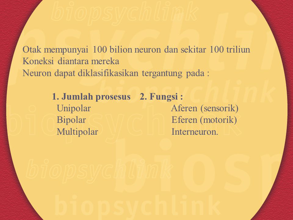 Otak mempunyai 100 bilion neuron dan sekitar 100 triliun