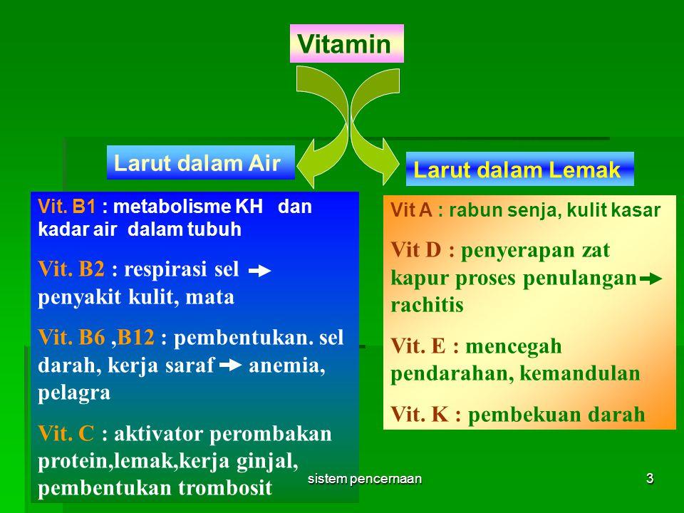 Vitamin Larut dalam Air Larut dalam Lemak