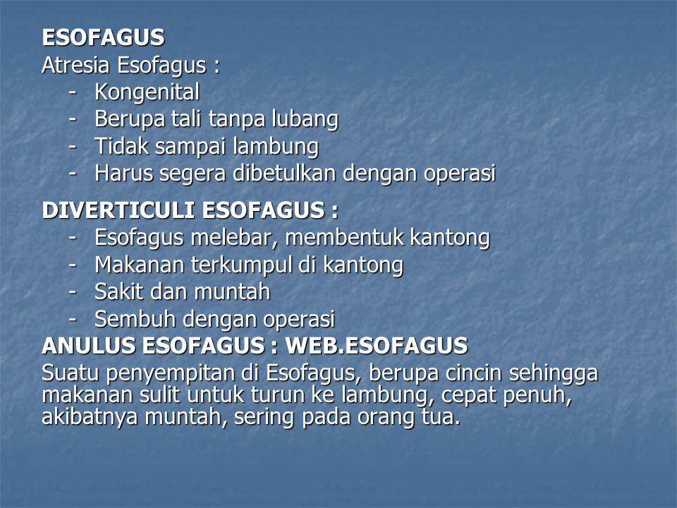 ESOFAGUS Atresia Esofagus : - Kongenital. - Berupa tali tanpa lubang. - Tidak sampai lambung. - Harus segera dibetulkan dengan operasi.