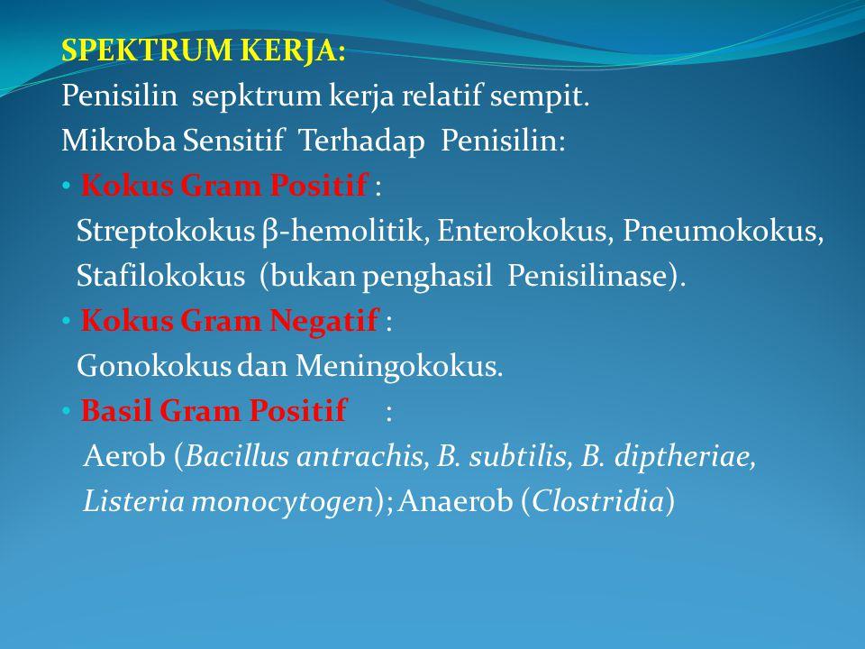 SPEKTRUM KERJA: Penisilin sepktrum kerja relatif sempit. Mikroba Sensitif Terhadap Penisilin: Kokus Gram Positif :