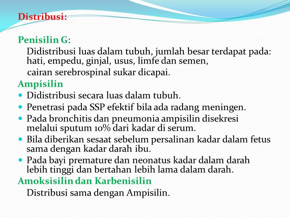 Distribusi: Penisilin G: Didistribusi luas dalam tubuh, jumlah besar terdapat pada: hati, empedu, ginjal, usus, limfe dan semen,