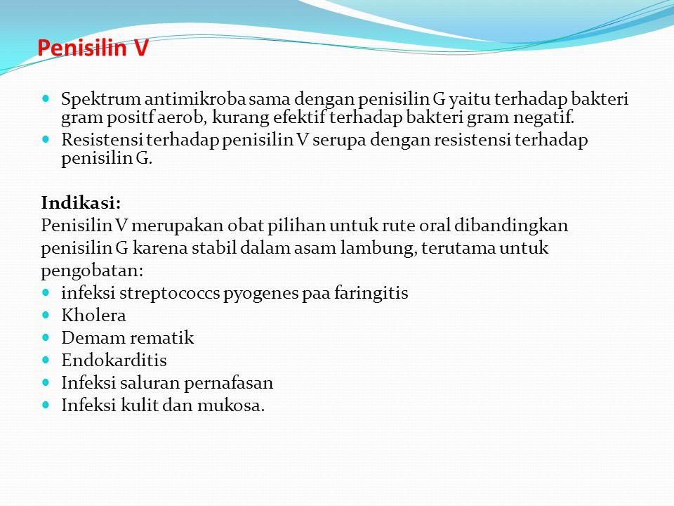 Penisilin V Spektrum antimikroba sama dengan penisilin G yaitu terhadap bakteri gram positf aerob, kurang efektif terhadap bakteri gram negatif.