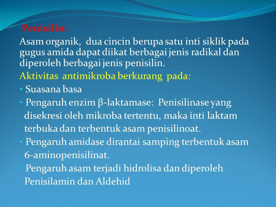 Penisilin: