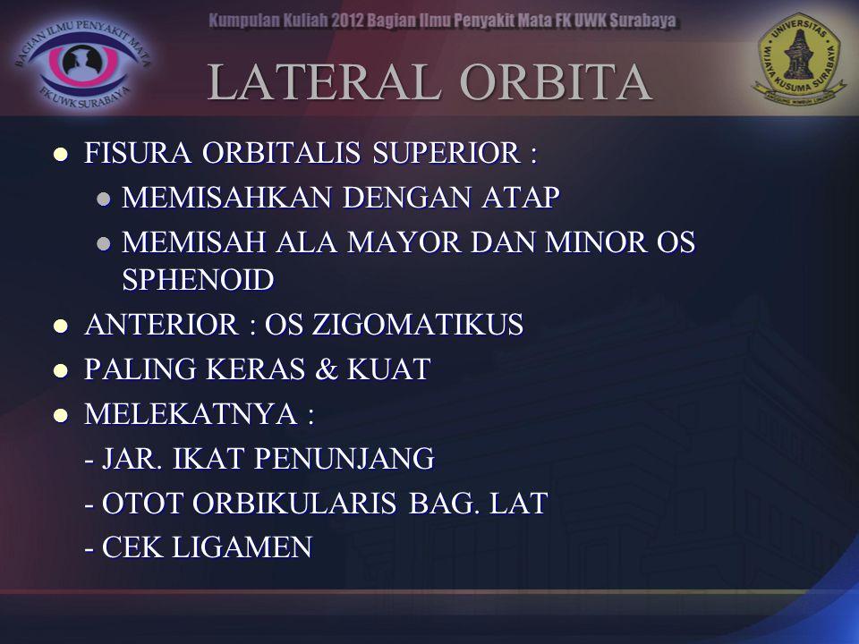 LATERAL ORBITA FISURA ORBITALIS SUPERIOR : MEMISAHKAN DENGAN ATAP