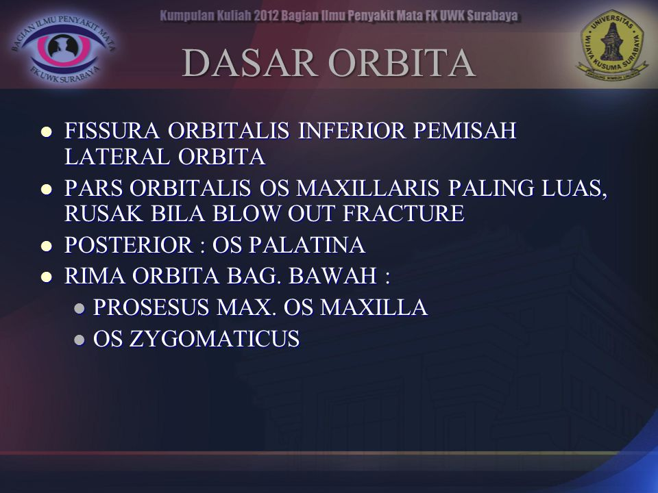 DASAR ORBITA FISSURA ORBITALIS INFERIOR PEMISAH LATERAL ORBITA