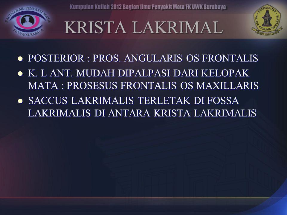 KRISTA LAKRIMAL POSTERIOR : PROS. ANGULARIS OS FRONTALIS