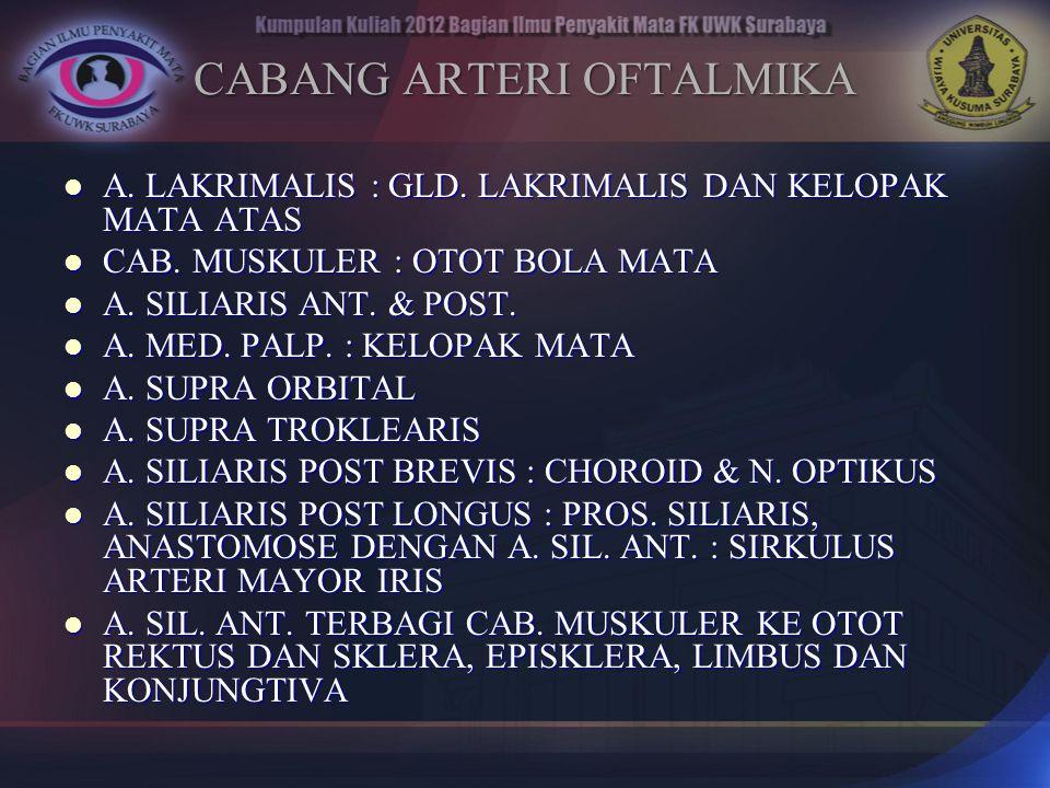 CABANG ARTERI OFTALMIKA