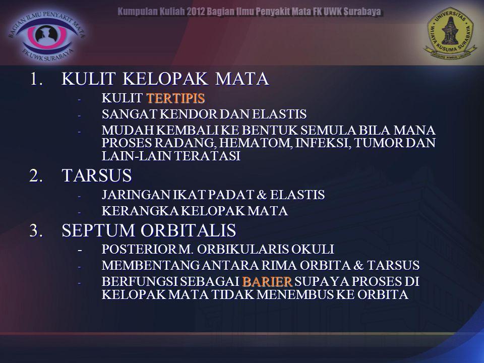 KULIT KELOPAK MATA TARSUS SEPTUM ORBITALIS KULIT TERTIPIS