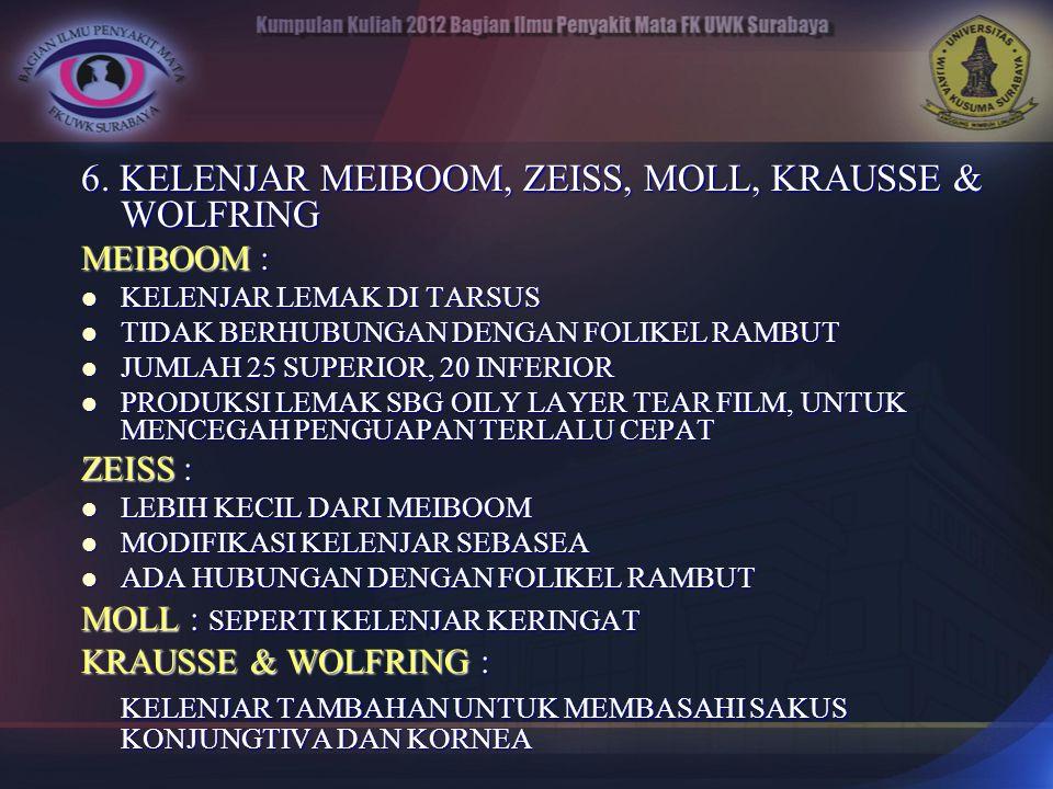 6. KELENJAR MEIBOOM, ZEISS, MOLL, KRAUSSE & WOLFRING