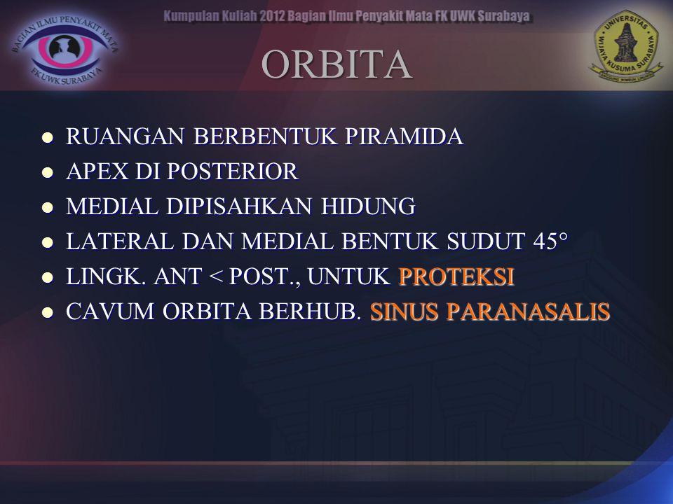 ORBITA RUANGAN BERBENTUK PIRAMIDA APEX DI POSTERIOR