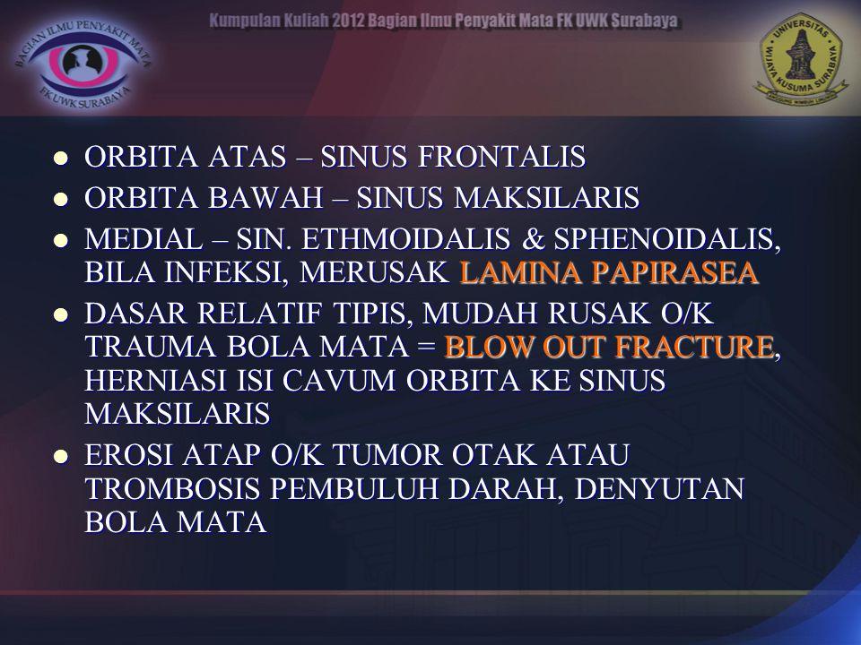 ORBITA ATAS – SINUS FRONTALIS