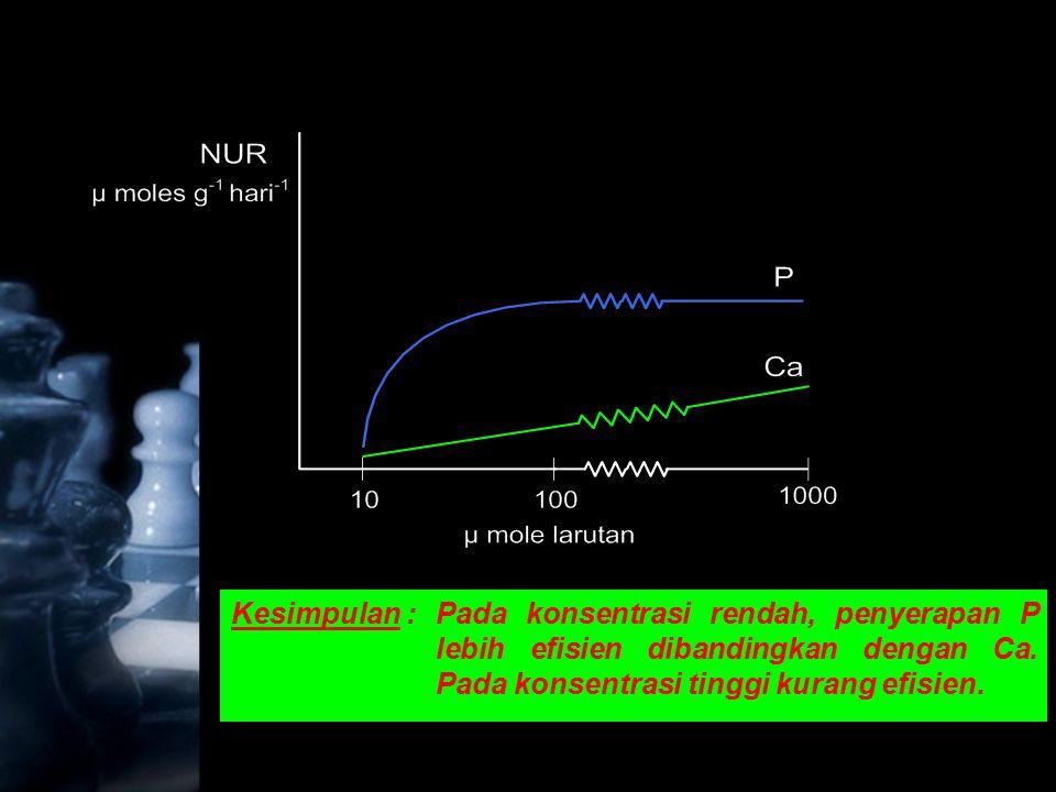 Kesimpulan : Pada konsentrasi rendah, penyerapan P lebih efisien dibandingkan dengan Ca.