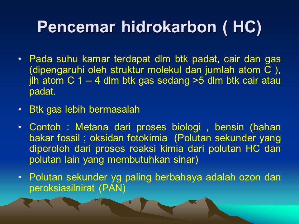Pencemar hidrokarbon ( HC)