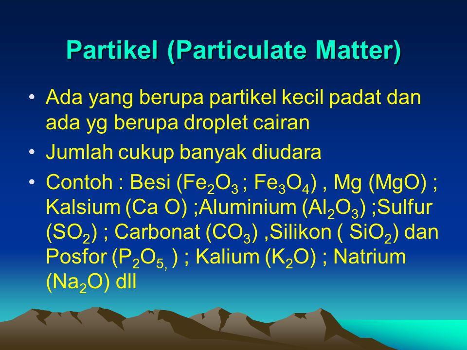 Partikel (Particulate Matter)