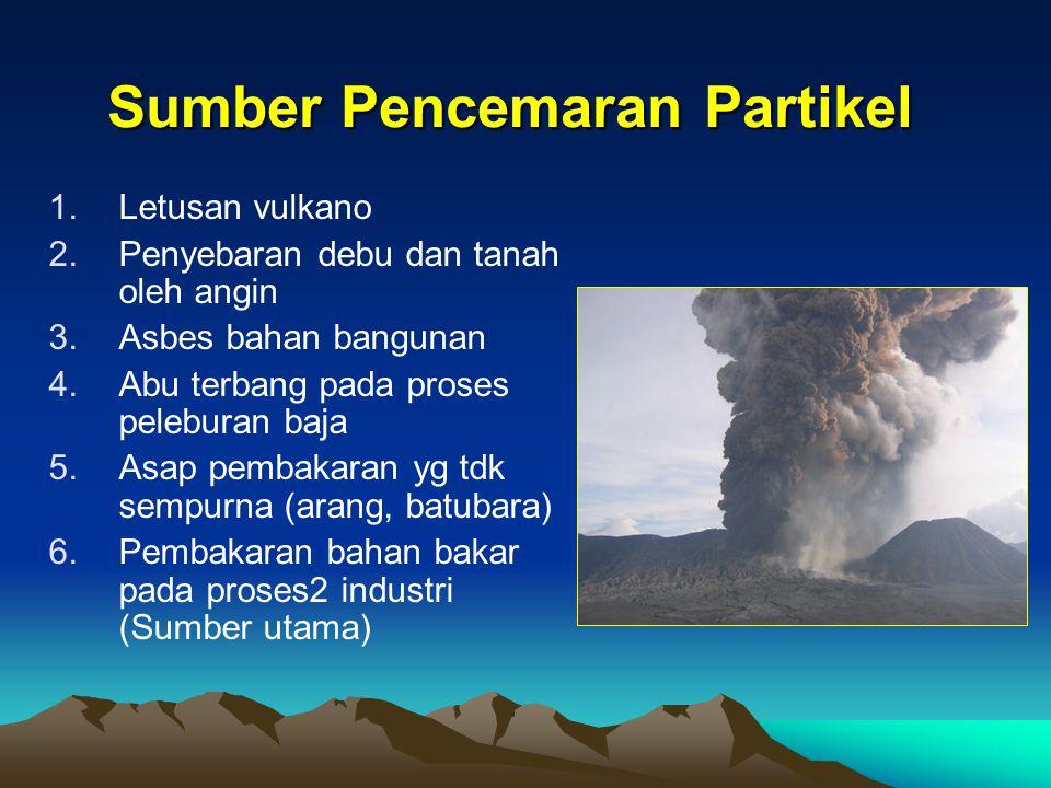 Sumber Pencemaran Partikel