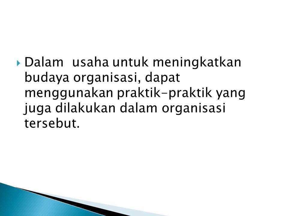Dalam usaha untuk meningkatkan budaya organisasi, dapat menggunakan praktik-praktik yang juga dilakukan dalam organisasi tersebut.