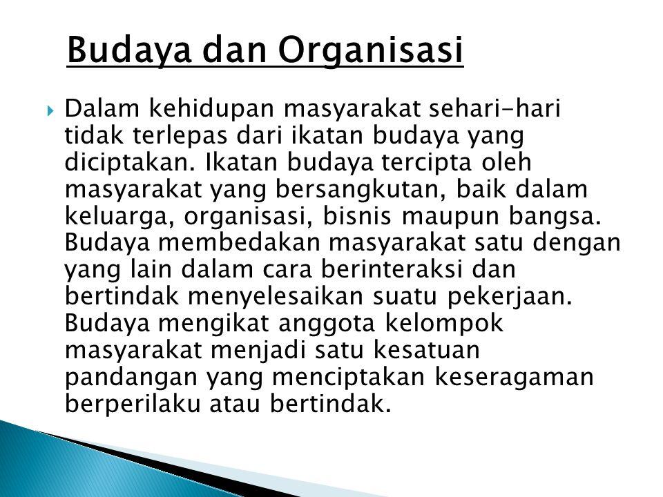 Budaya dan Organisasi