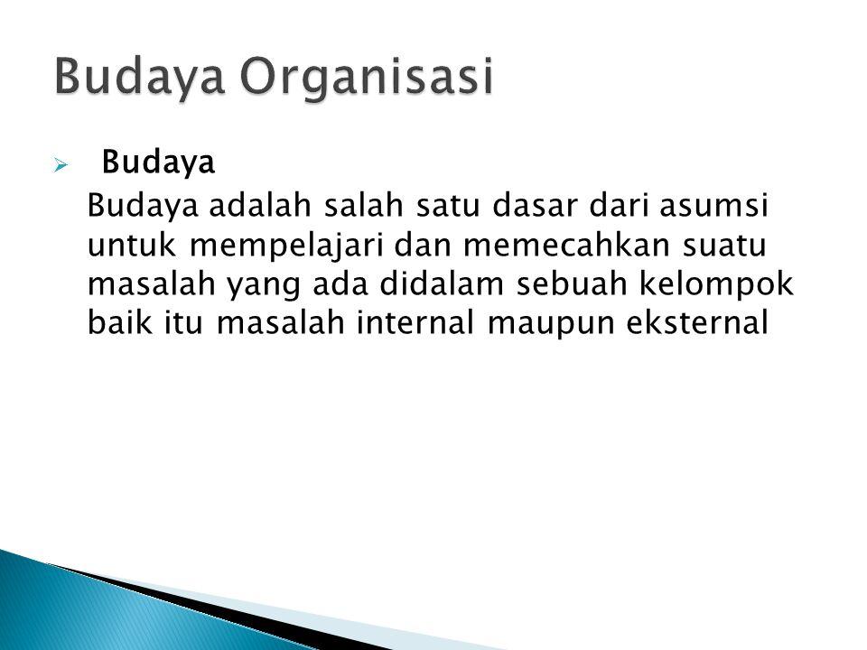 Budaya Organisasi Budaya