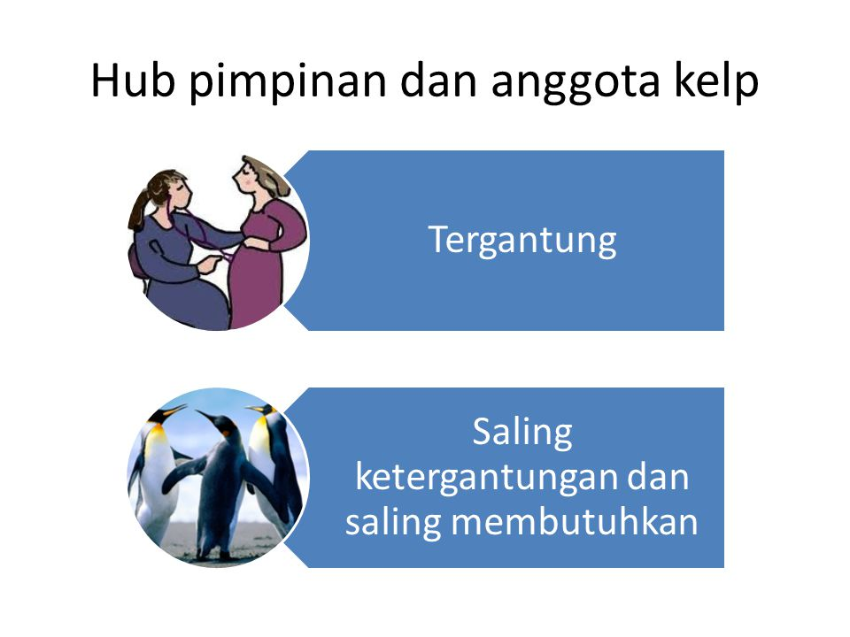 Hub pimpinan dan anggota kelp