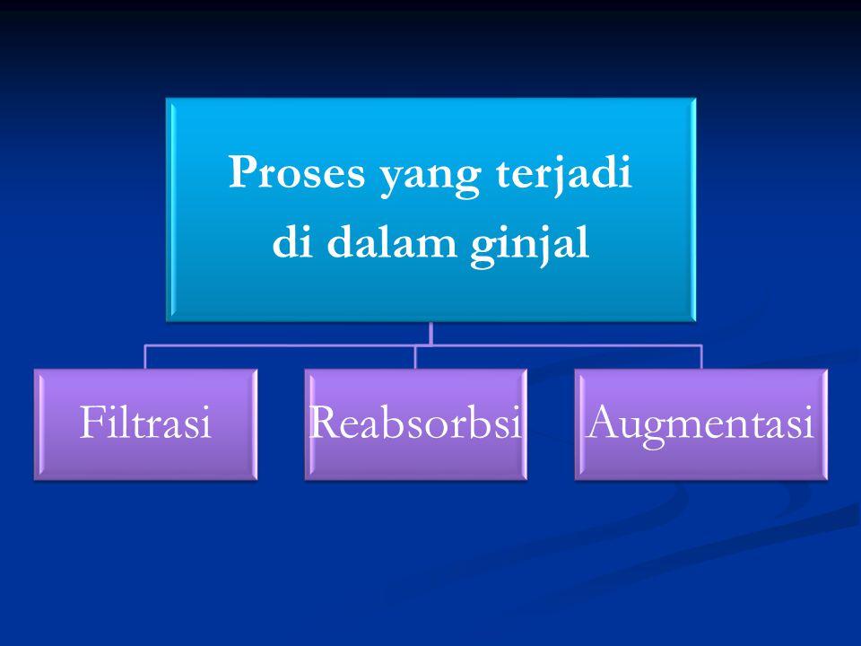 Proses yang terjadi di dalam ginjal Filtrasi Reabsorbsi Augmentasi