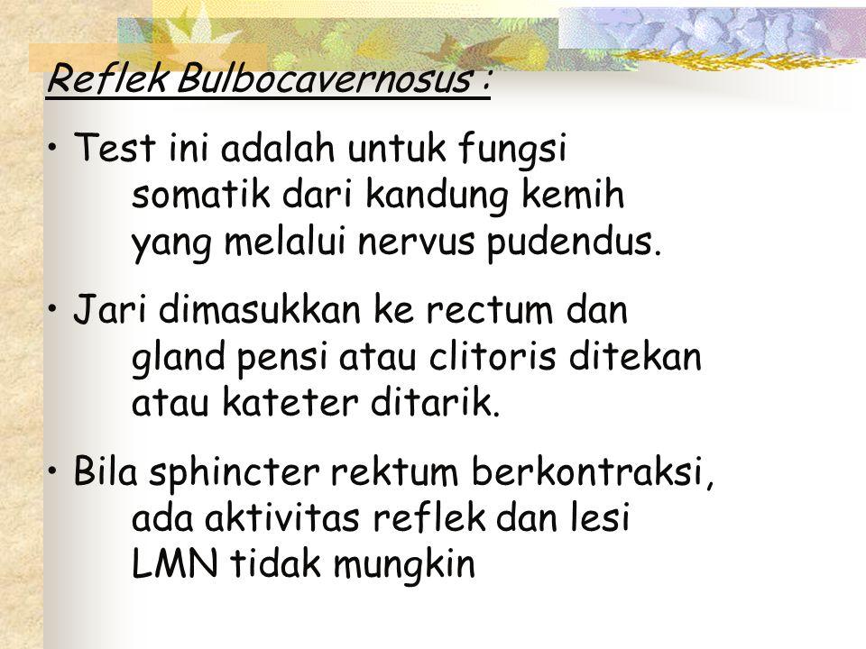 Reflek Bulbocavernosus :
