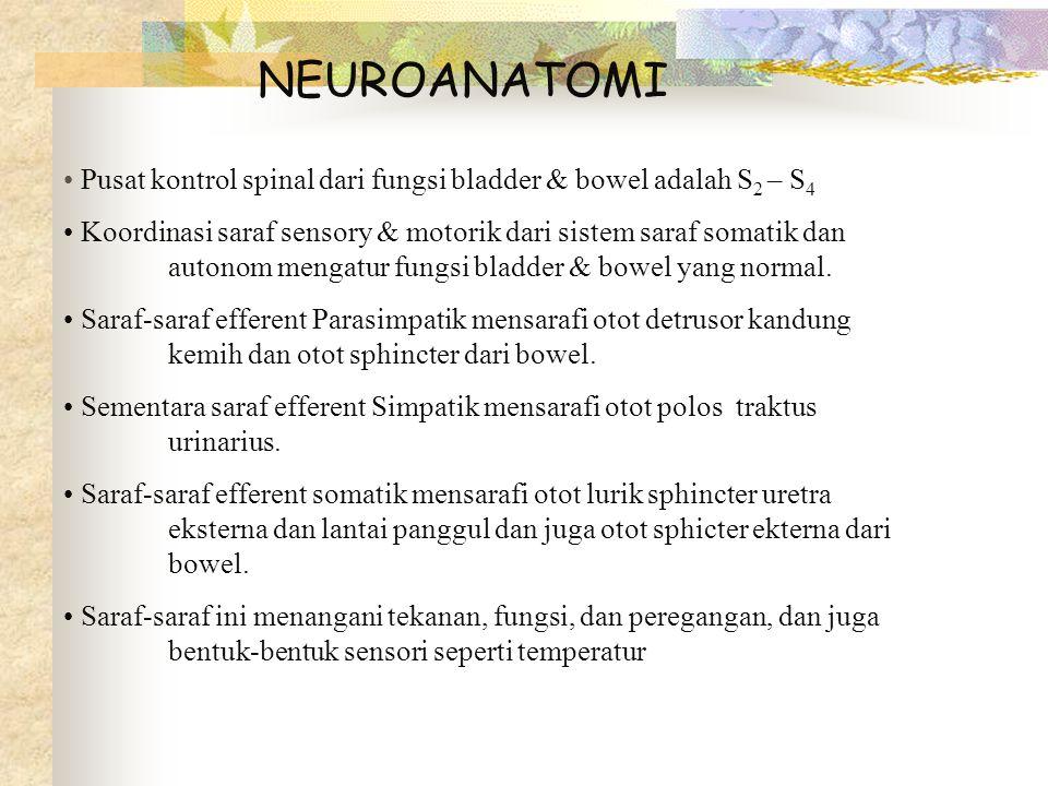 NEUROANATOMI Pusat kontrol spinal dari fungsi bladder & bowel adalah S2 – S4.