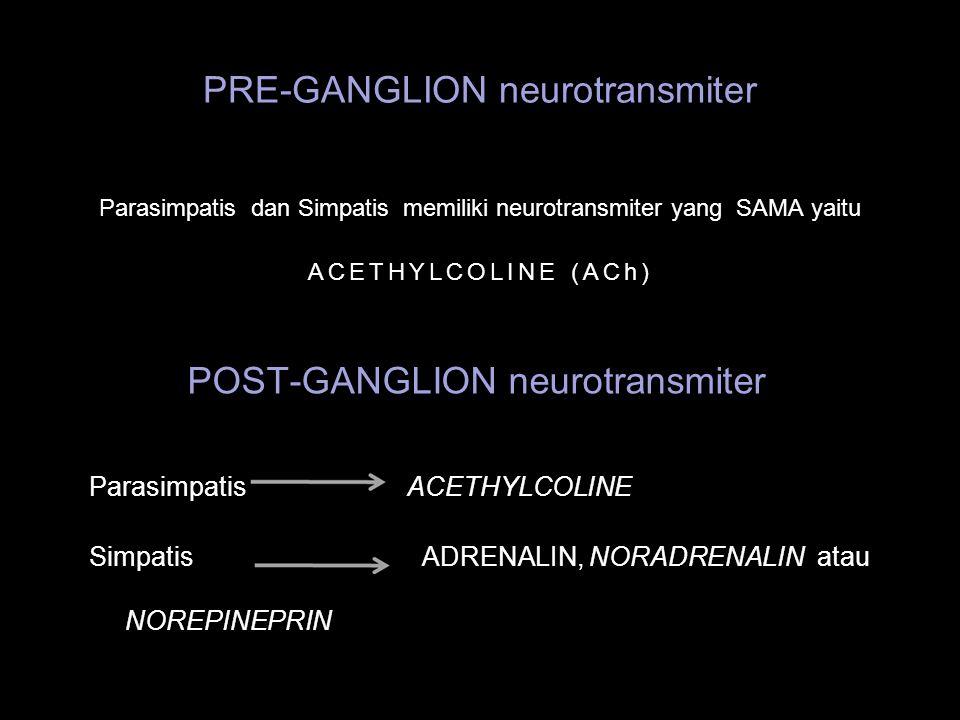 PRE-GANGLION neurotransmiter