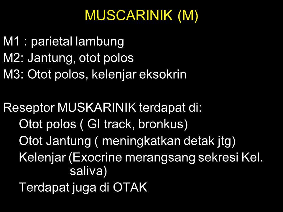 MUSCARINIK (M) M1 : parietal lambung M2: Jantung, otot polos