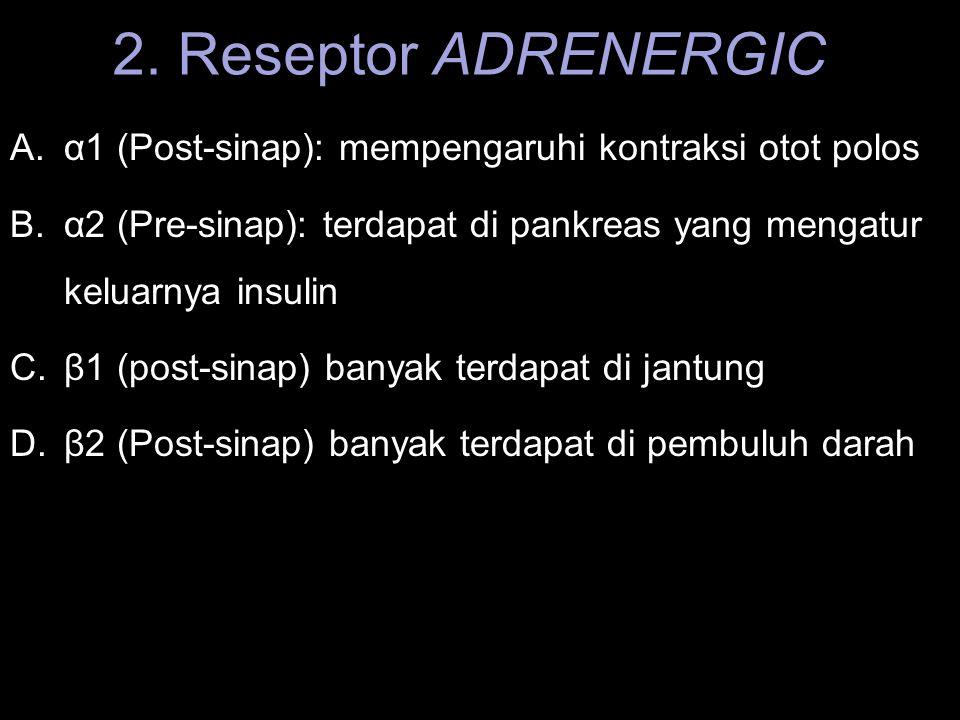 2. Reseptor ADRENERGIC α1 (Post-sinap): mempengaruhi kontraksi otot polos. α2 (Pre-sinap): terdapat di pankreas yang mengatur keluarnya insulin.