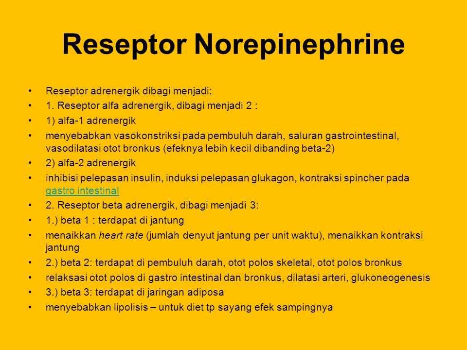 Reseptor Norepinephrine