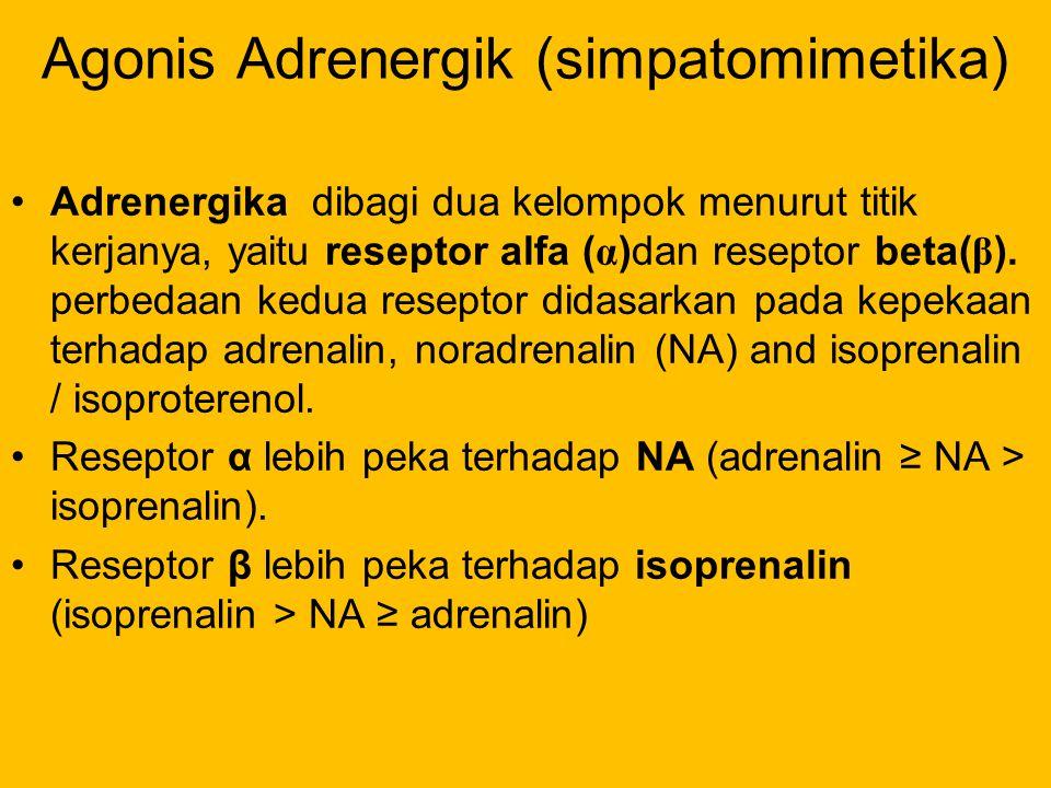 Agonis Adrenergik (simpatomimetika)