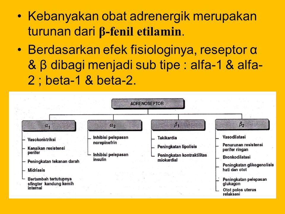 Kebanyakan obat adrenergik merupakan turunan dari β-fenil etilamin.