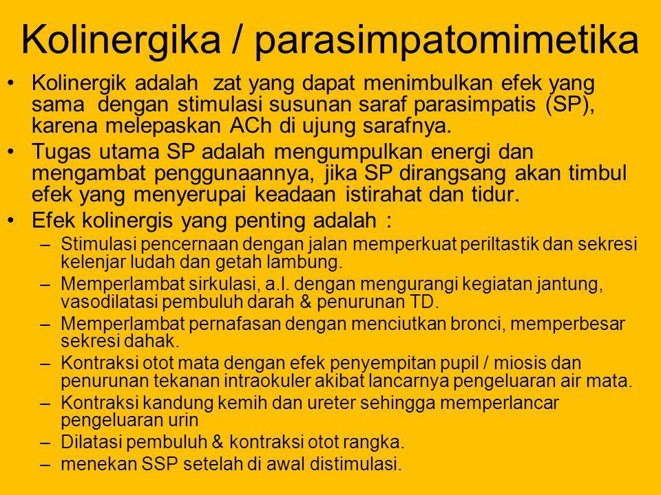 Kolinergika / parasimpatomimetika