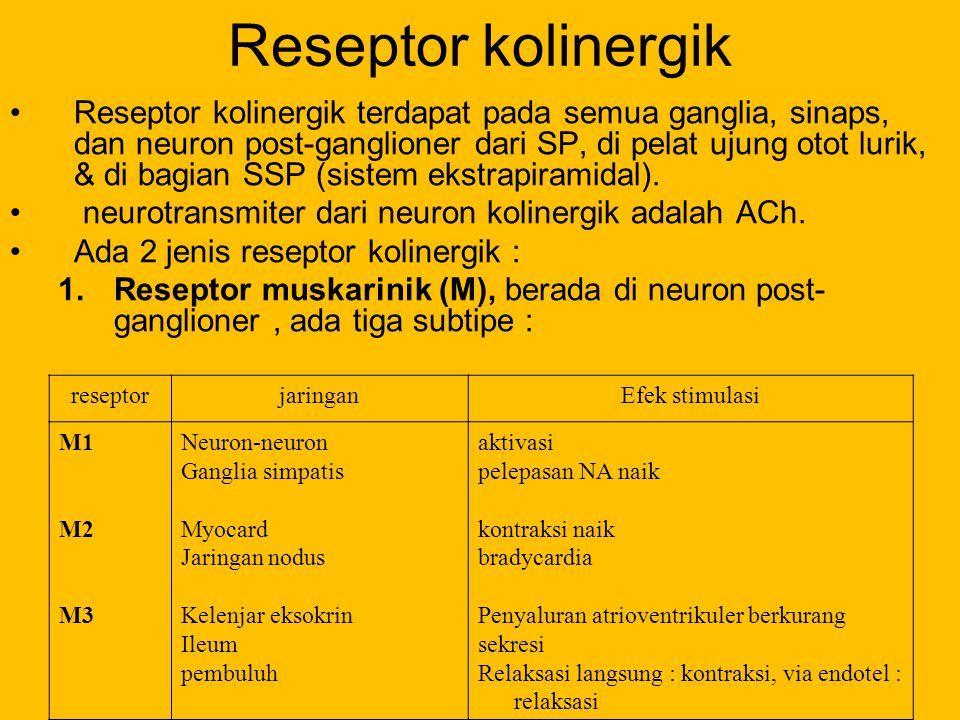 Reseptor kolinergik
