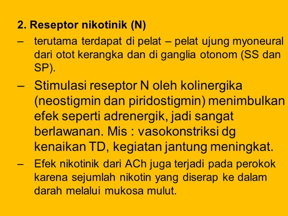 2. Reseptor nikotinik (N)