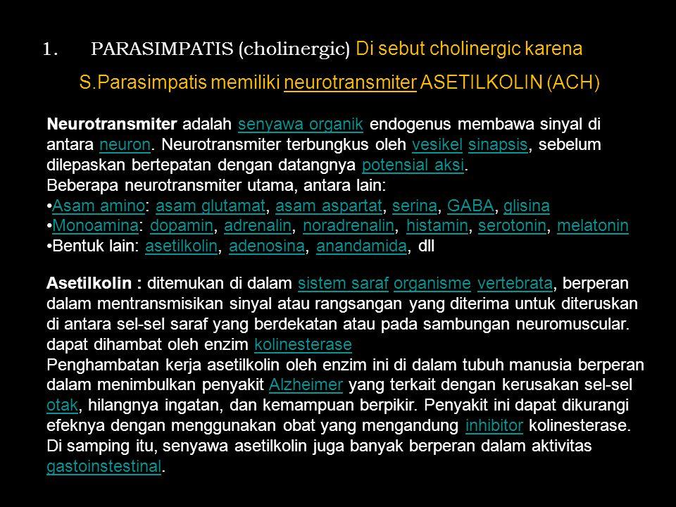 PARASIMPATIS (cholinergic) Di sebut cholinergic karena S
