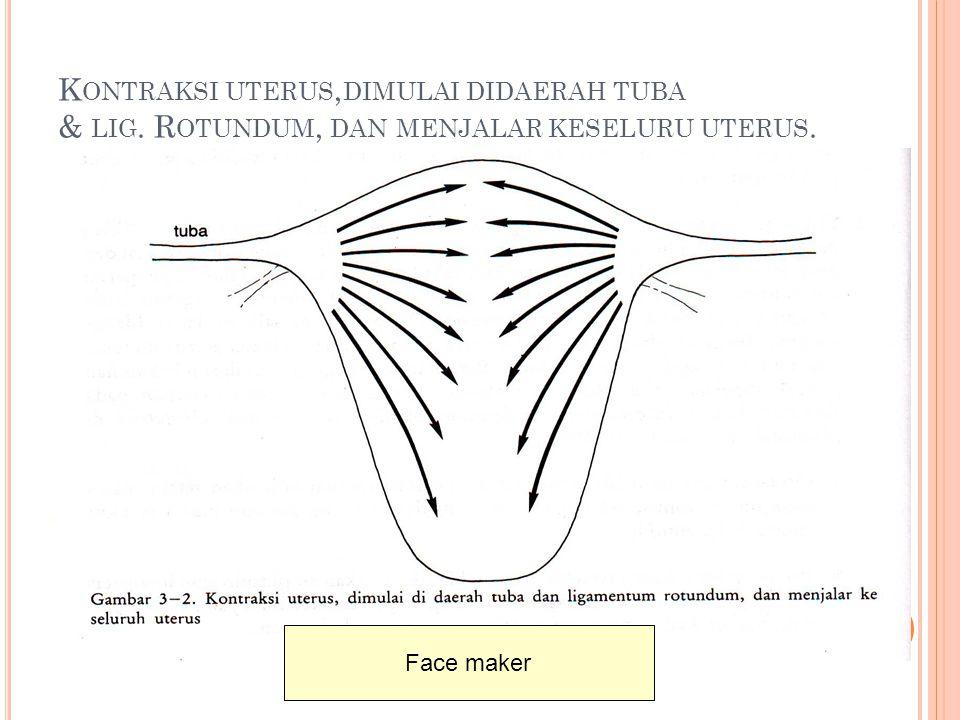 Kontraksi uterus,dimulai didaerah tuba & lig
