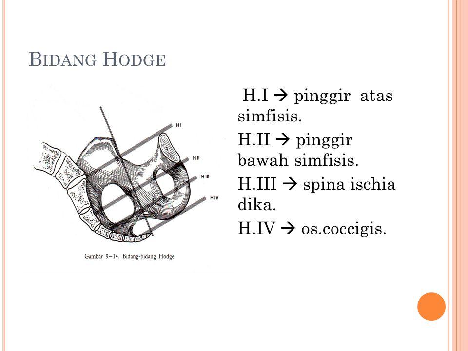 Bidang Hodge H.I  pinggir atas simfisis.