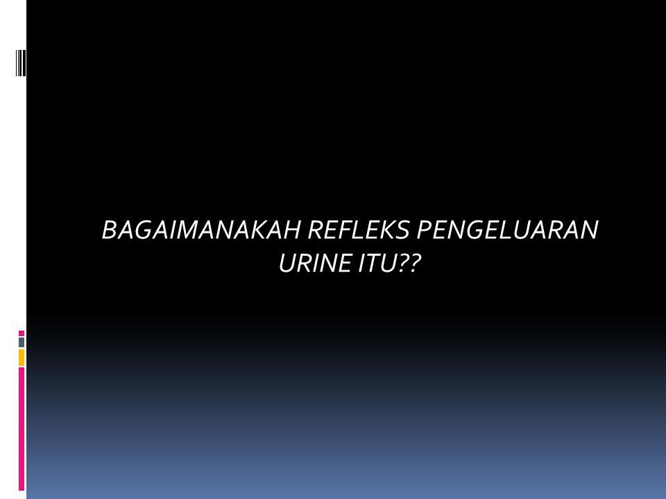 BAGAIMANAKAH REFLEKS PENGELUARAN URINE ITU