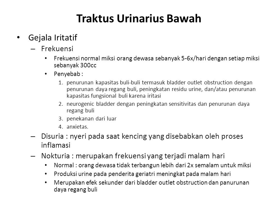 Traktus Urinarius Bawah