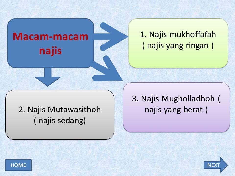 3. Najis Mugholladhoh ( najis yang berat )