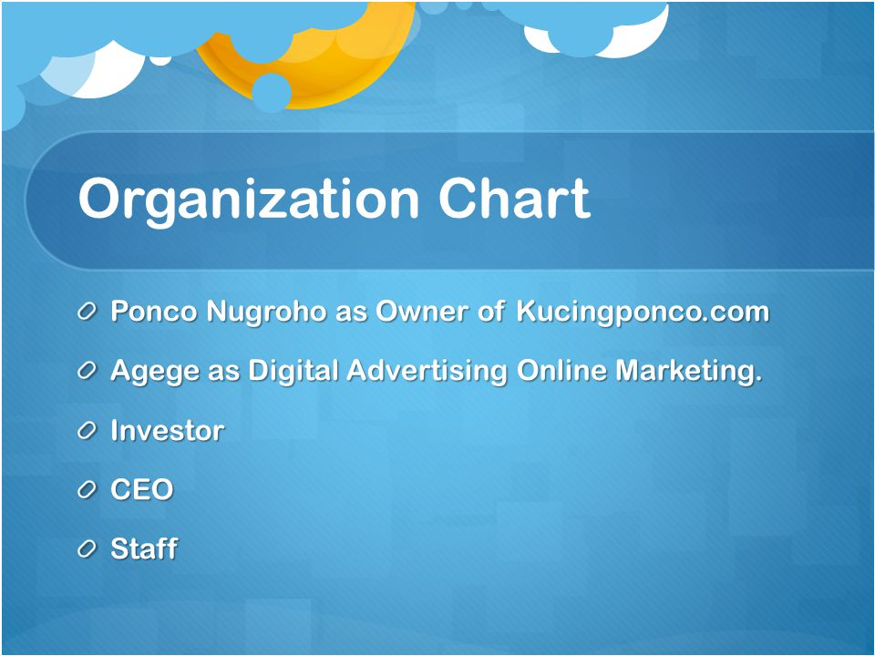 Organization Chart Ponco Nugroho as Owner of Kucingponco.com